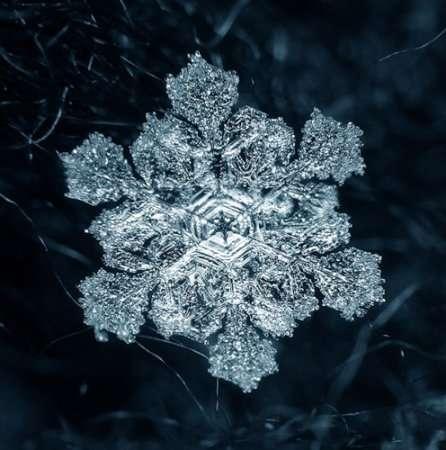 Макросъемка снежинок.