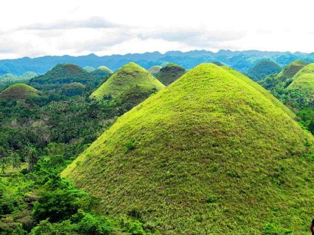 Долгопяты и Шоколадные холмы на Филиппинах.