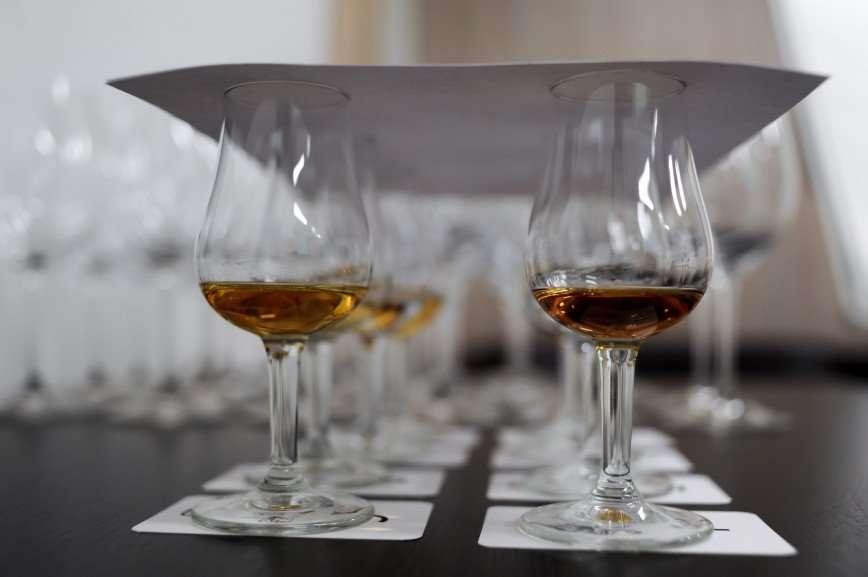 Как показать мацерацию жестами и какие вина выбирают звезды: все о проекте WineState